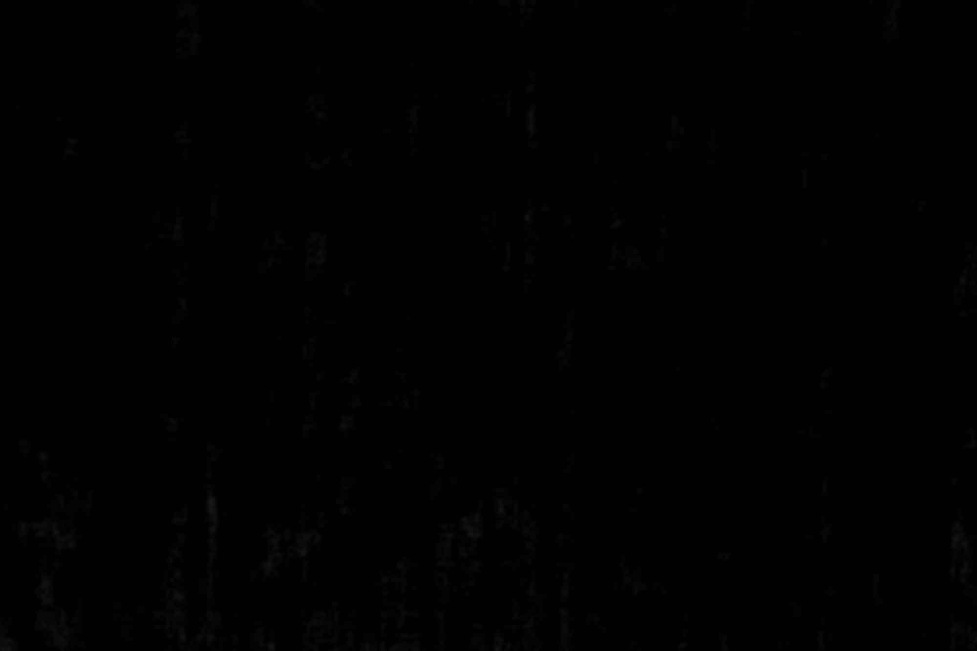 Χαλί Trendy Shiny Black Carpet Couture 200X300